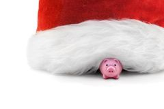 Year of a pig. Small plastic pig and Santa's hat on a white background Stock Image