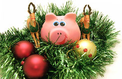 Year a pig. New Year's toys for One year a pig Stock Photo