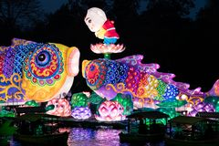 Year of the pig, Chinese New year 2019 lantern outdoor happy figure. Symbol of the Chinese zodiac New year 2019 a happy pig figure in a bed of flowers stock photos