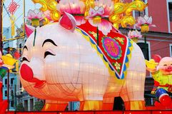 Year of Pig, the Chinese Zodiac stock image
