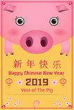 Year of the pig vector illustration. Happy Chinese New Year 2019 year of the pig cartoon style. Chinese characters mean Happy New Year, wealthy, Zodiac sign for vector illustration