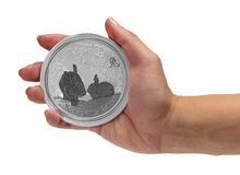 Year of the Rabbit silver coin Royalty Free Stock Photography