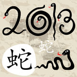 Year of the Snake 2013. 2013 Year snake symbol. Grange Vector illustration Stock Illustration