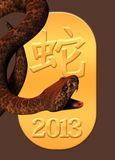 Year of the snake 2013. A rattle snake is posed over the date 2013 on a deep brown background, representing the chinese year of the snake Stock Photography