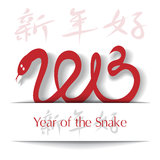 Year of the Snake 2013 applique background. Vector illustration Stock Images