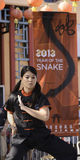 Year of the Snake 2013 Stock Photo
