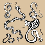 Year snakes symbol Royalty Free Stock Images