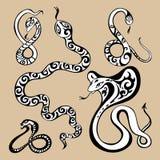 Year snakes symbol. 2013 Year snake symbol. Horoscope  illustration Royalty Free Stock Images