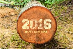 Year 2016 written with vintage letterpress printing blocks on rustic wood background Stock Photos