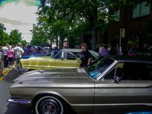 Yearly car show at Green Lake, Washington. Hundreds of people, cars, trucks and vans. Plenty eat and drink, even a been garden.  At the yearly Green Lake Car Royalty Free Stock Photos