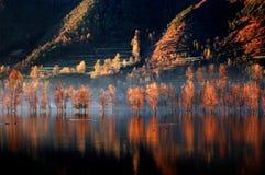 Yearning Lake 1 stock images