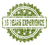 Grunge Textured 15 YEARS EXPERIENCE Stamp Seal. 15 YEARS EXPERIENCE stamp seal watermark with rubber print style. Green rubber print of 15 YEARS EXPERIENCE text Stock Illustration