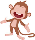 The years of the monkey. Royalty Free Stock Photos