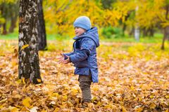 1 years old baby walks on fallen leaves Royalty Free Stock Images