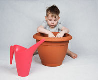 4 years old boy planting seeds Royalty Free Stock Photos