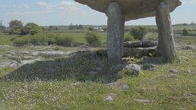 5000 years old Polnabrone Dolmen in Burren, National Park, Co. Clare - Ireland - Flat video profile. stock video footage