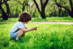 3 years old toddler child boy walking alone in spring or summer walk in garden Royalty Free Stock Photography
