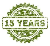 Grunge Textured 15 YEARS Stamp Seal. 15 YEARS stamp seal watermark with rubber print style. Green rubber print of 15 YEARS caption with dirty texture stock illustration