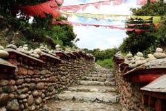 3000years velho da estrada do chá Imagens de Stock