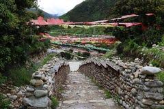 3000years velho da estrada do chá Foto de Stock