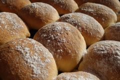 Yeast buns sprinkle with sugar Royalty Free Stock Image