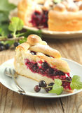 Yeast dough pie with black currant Royalty Free Stock Image