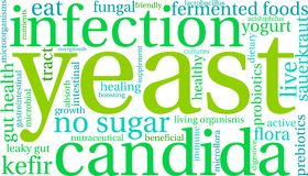Yeast Infection Word Cloud. On a white background Stock Image