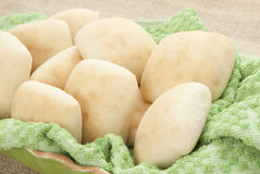 Yeast Rolls Stock Images