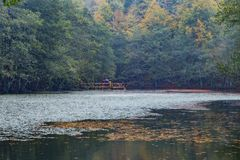 Yedigoller国家公园 美丽, bolu 免版税库存图片