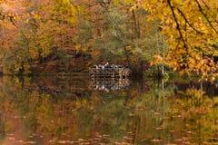 Yedigoller Nationaal Park Stock Foto's