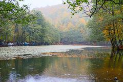 Yedigoller National Park. Beautiful, bolu. royalty free stock photography