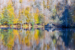 Yedigoller, Turkey. Yedigoller is a very famous national park at Turkey. Yellow autumn forest reflecting symmetrically like a mirror on the lake surface Stock Image