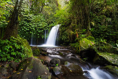 Yeh Hoo-Wasserfall Bali lizenzfreies stockfoto