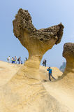 Yehliu Geopark, Тайвань Стоковая Фотография RF