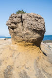 Yehliu Geopark Stock Images