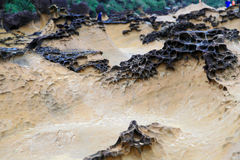 Yehliu geopark in Taiwan Stock Images