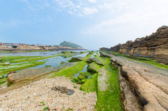 Yehliu Geopark, Taiwan. Stock Images