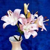 Of Yehuda Bouquet van lelies Juli 2010 Royalty-vrije Stock Foto