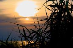 Yeisk Liman, soirée d'été, coucher du soleil, Russie photo stock