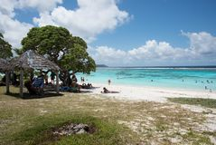 Yejele Beach: Tropical Getaway. TADINE,MARE,NEW CALEDONIA-DECEMBER 2,2016: Tourists sunbathing, swimming and snorkelling in the turquoise Pacific Ocean at the Stock Images