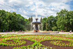 Yekaterinburg Dendrological Park Stock Photography