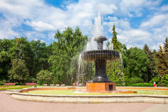 Yekaterinburg Dendrological Park Royalty Free Stock Image