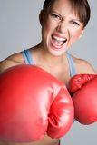 Yelling Boxing Woman Stock Images