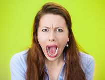 Yelling woman Royalty Free Stock Image