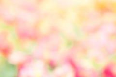 yello för bakgrund för stil för abstrakt blomma för suddighetsfärgnatur utomhus- Royaltyfri Bild