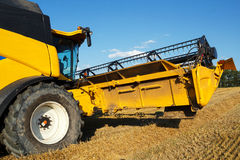 Yellov combine on field harvesting gold wheat Stock Photography