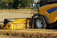 Yellov combine on field harvesting gold wheat Royalty Free Stock Photo