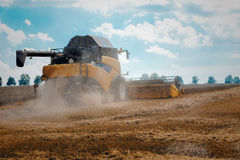 Yellov harvester on field harvesting gold wheat Royalty Free Stock Images