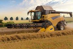 Yellov harvester on field harvesting gold wheat Royalty Free Stock Image