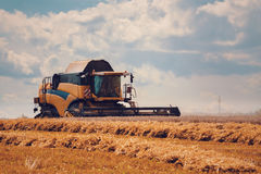 Yellov harvester on field harvesting gold wheat Royalty Free Stock Photos